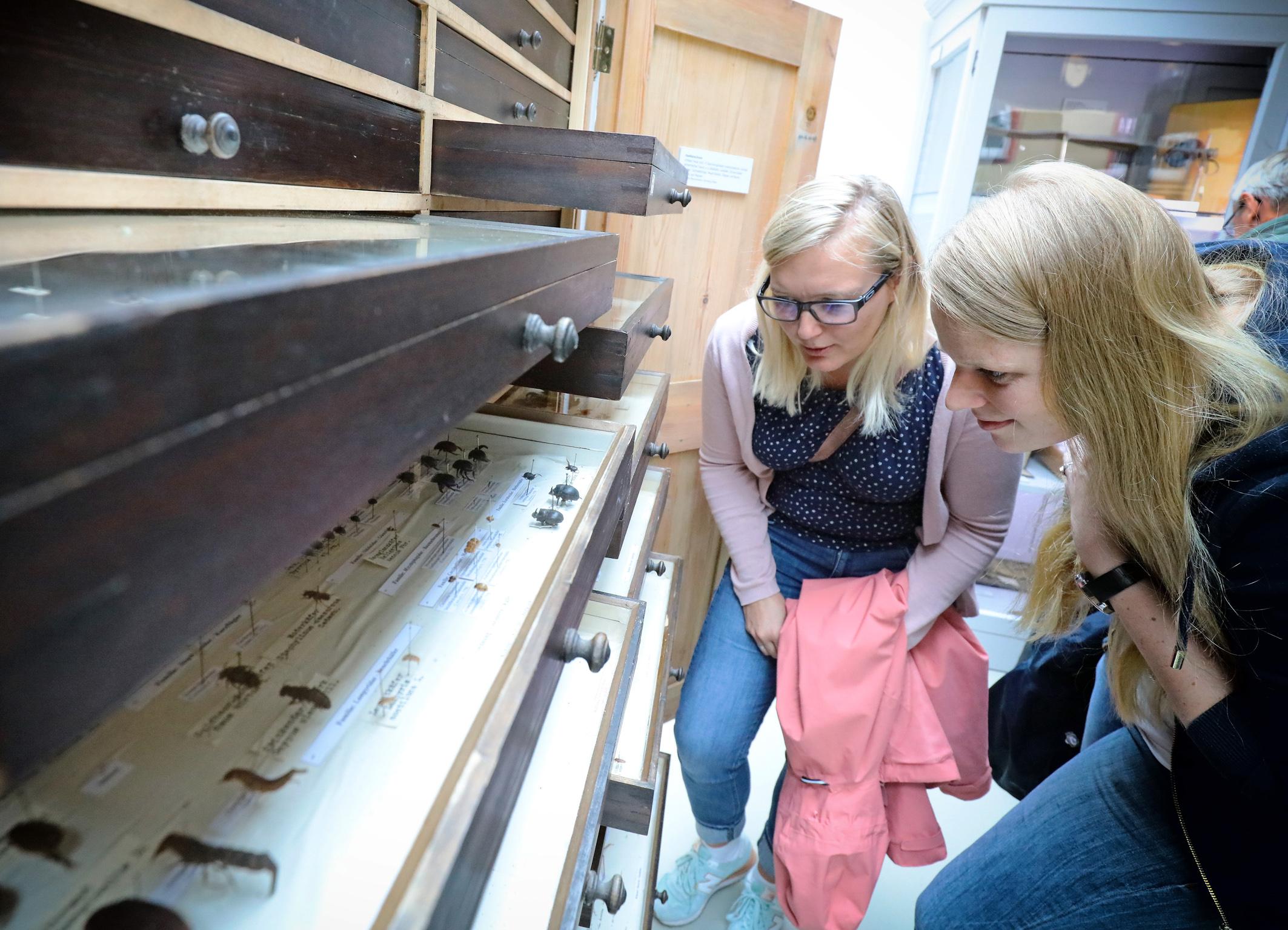Deutsches Meeresmuseum Kommende Veranstaltungen